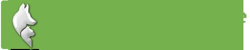 logo-clinique-veterinaire-st-lin-laurentides-vert-8